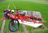 时风牌巧手系列乘坐式水稻插秧机