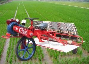 时风牌巧手系列乘坐式水稻插秧机产品图图