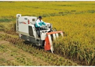 久保田4LBZ-145G(PRO588i-G)玉米收获机产品图图