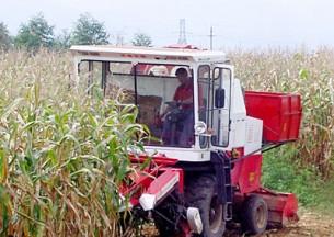 江苏沃得4YZ-3玉米收获机