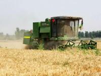 2015中联重科谷王TB60小麦收割机隆尧县作业视频1