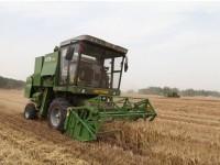 中联重科谷王小麦收割机隆尧县麦收作业视频2