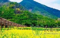 福建:800万元补助推动生态循环农业发展