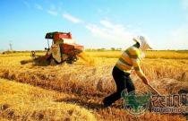 2017年普通农民申报的补助项目有哪些?