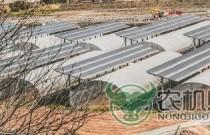 工业反哺农业--德昌县光伏农业科技示范产业园