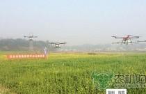 怀化市积极推广超低空遥控飞行植保
