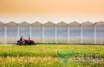 天津市全面建设四个现代农业产业技术体系