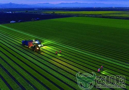 用无人机,守护一粒米从田间到碗里