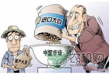 如何认识中美贸易战中的大豆问题?