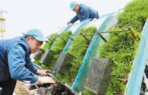 现代化装备为绿色农业加速