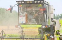 安徽夏收进入高峰期 新型农机助力小麦高效抢收