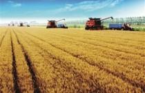 看全程机械化如何赋能高原农业