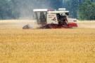 小麦收获近七成 水稻播栽面积超两成