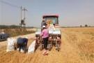 河南小麦机收工作基本结束