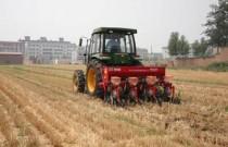 安徽省大力推广玉米免耕机械直播技术播种面积逾1650万亩