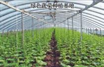 黑龙江:6700万亩标准化基地赋能现代农业高质量发展