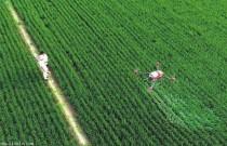 """""""粮二代""""发展智慧农业 走机械化之路"""