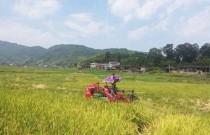 农业农村部:不断提高丘陵山区农业机械化水平