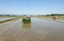 水稻生产全程机械化 江西制定时间表