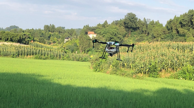无人机植机保助力合江县粮食生产