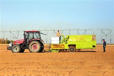 油莎豆在湖北实现全程机械化