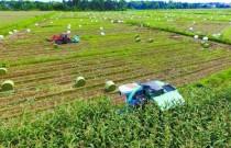 青海牧草生产耕种收基本实现全程机械化