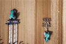 河南小麦播种结束 面积稳定质量提高