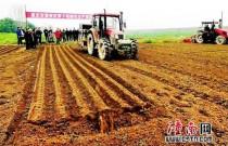 重庆市萝卜机械化生产田间日活动在潼南成功召开