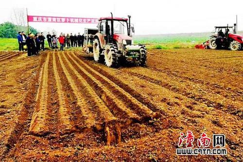 重庆市萝卜机械化生产田间日活动在潼南成功召开1
