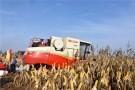 """粮食增产""""全国第一""""的背后——吉林省加快推进现代农业见闻"""