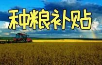 四川省省级财政对30亩以上的种粮大户进行补助