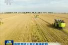 央视《新闻联播》:我国夏粮大面积开镰收割
