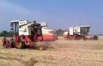 山东180万台套农业机械28万名农机技术人员和农机手参与三夏会战