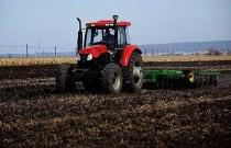 """全国土地日:让每一寸耕地都成为丰收的沃土 ——我国加强耕地保护推进""""藏粮于地"""""""