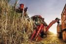 推动农机与农艺融合发展 广西农机化率年末将达65%