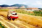 """山西省农机发展中心公布15个""""全程机械化+综合农事""""服务中心典型案例"""