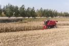 吉林打造率先实现农业现代化新样板